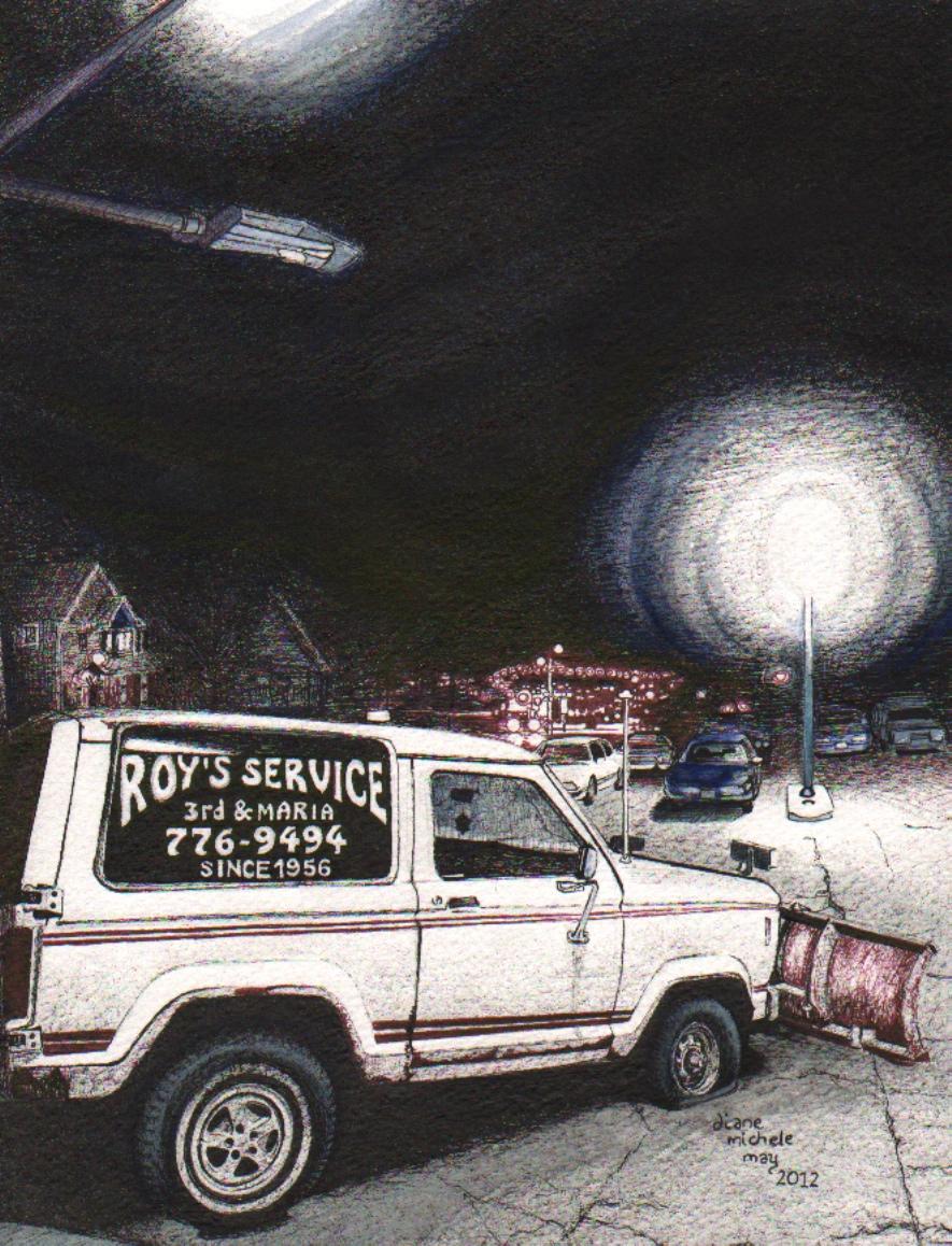 Roy's Service 100res24-bitcolor